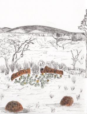 Viviane drawing 1