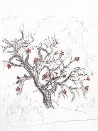 NeoRio Sculture Sketch, Viviane Le Courtois
