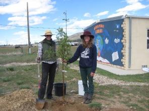 Tree-Planting-1