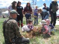Tree-planting-4