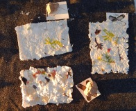 papermaking creations 1 NeoRio17