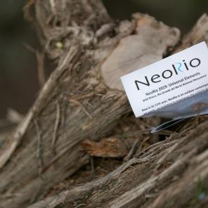 NeoRio 2019 - 2