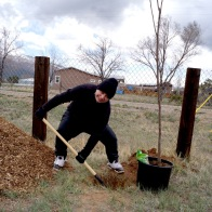 Misty Archuleta planting a tree with a smile despite snow and wind, photo by Claire Coté