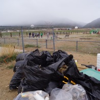 15 Bags of trash and invasive weeds removed, happy kids play in the background after a good morning of work, Photo by Claire Coté